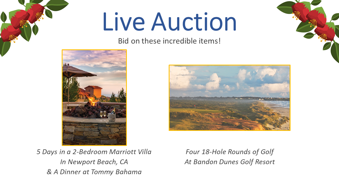 Live Auction Items Dinner 2020